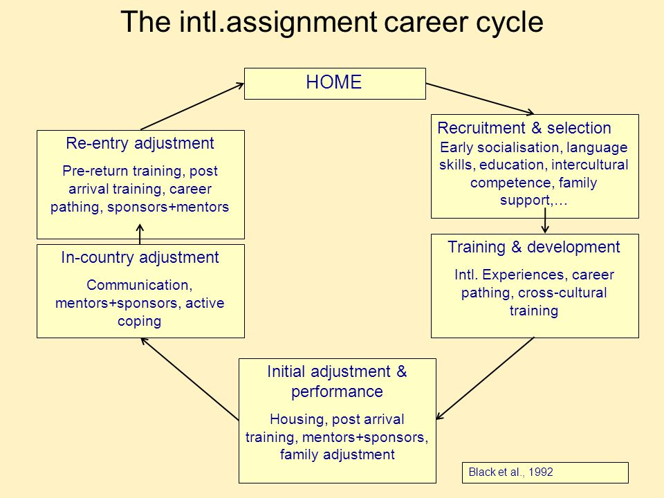 The intl.assignment career cycle