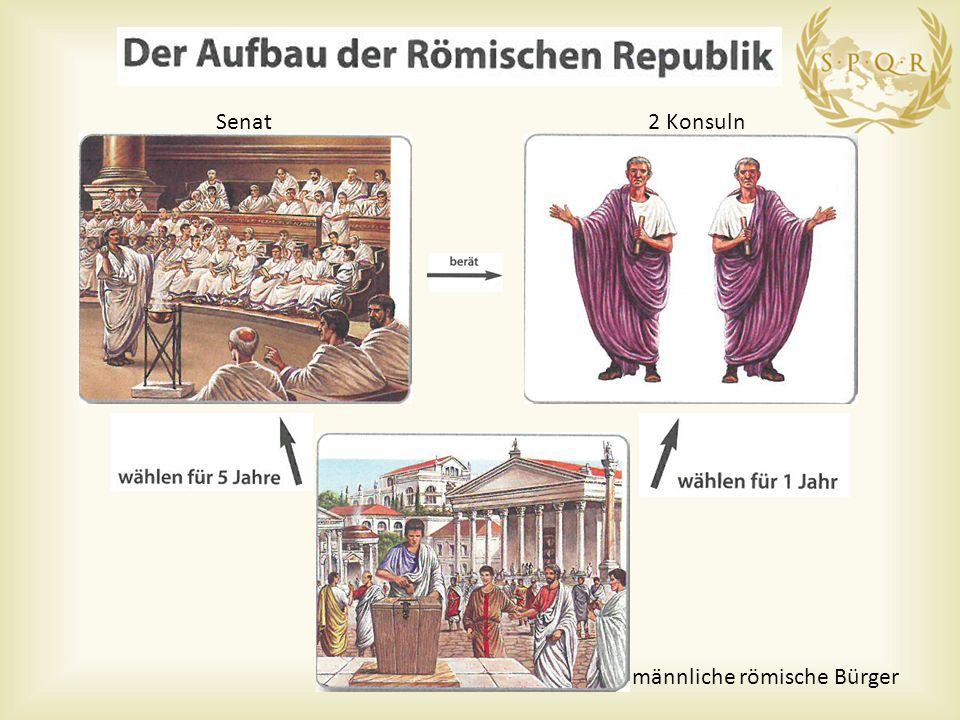 Senat 2 Konsuln männliche römische Bürger