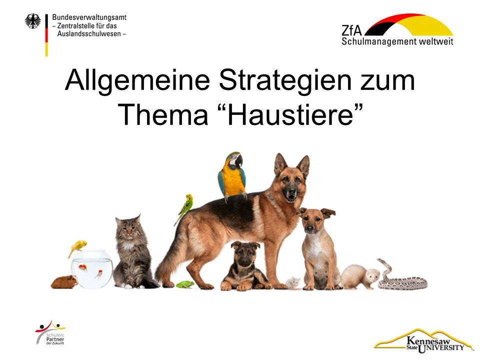 Allgemeine Strategien zum Thema Haustiere