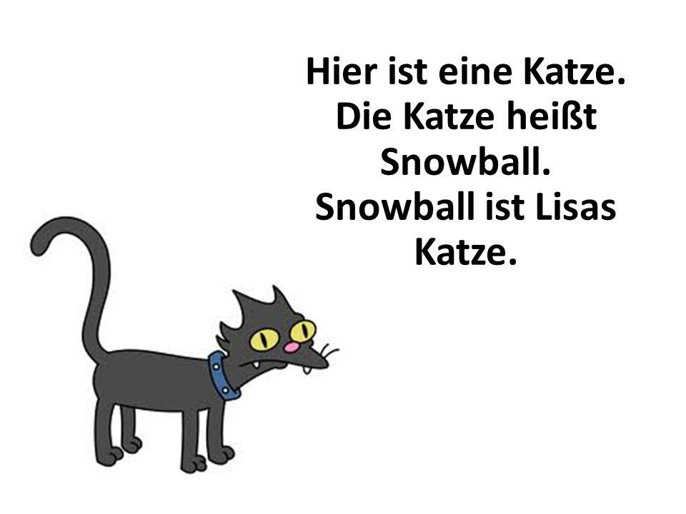 Die Katze heißt Snowball. Snowball ist Lisas Katze.