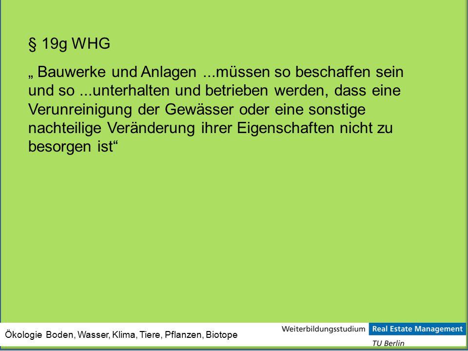 § 19g WHG