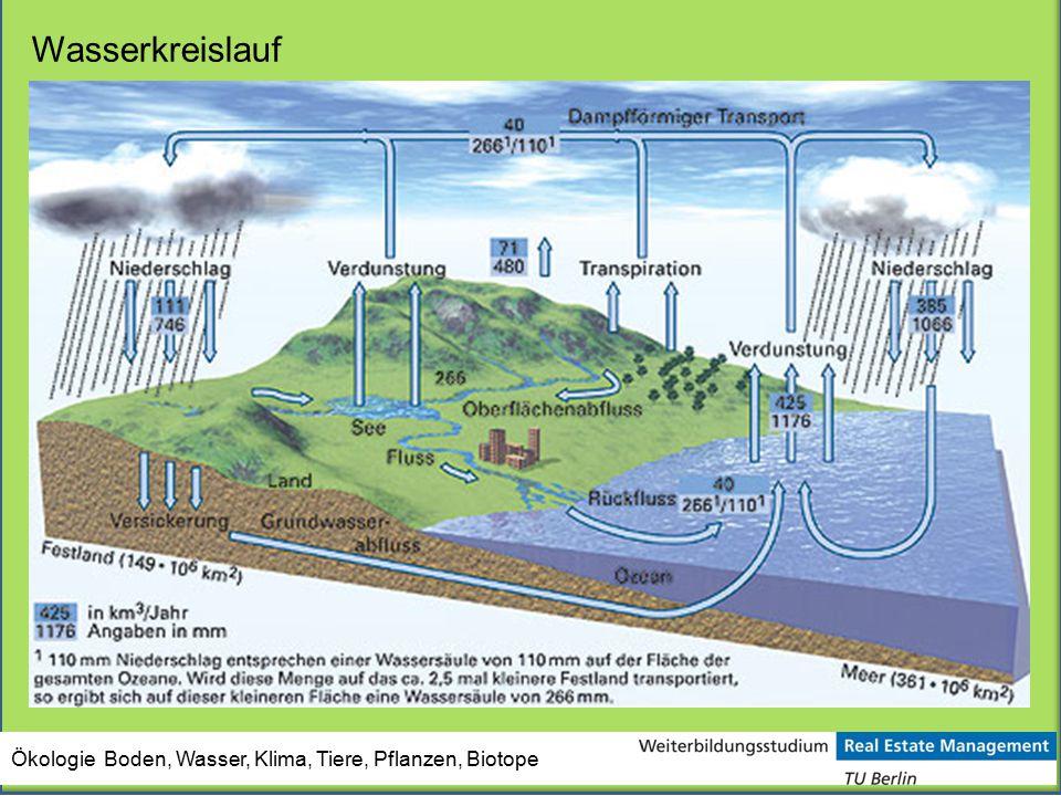 Wasserkreislauf Ökologie Boden, Wasser, Klima, Tiere, Pflanzen, Biotope