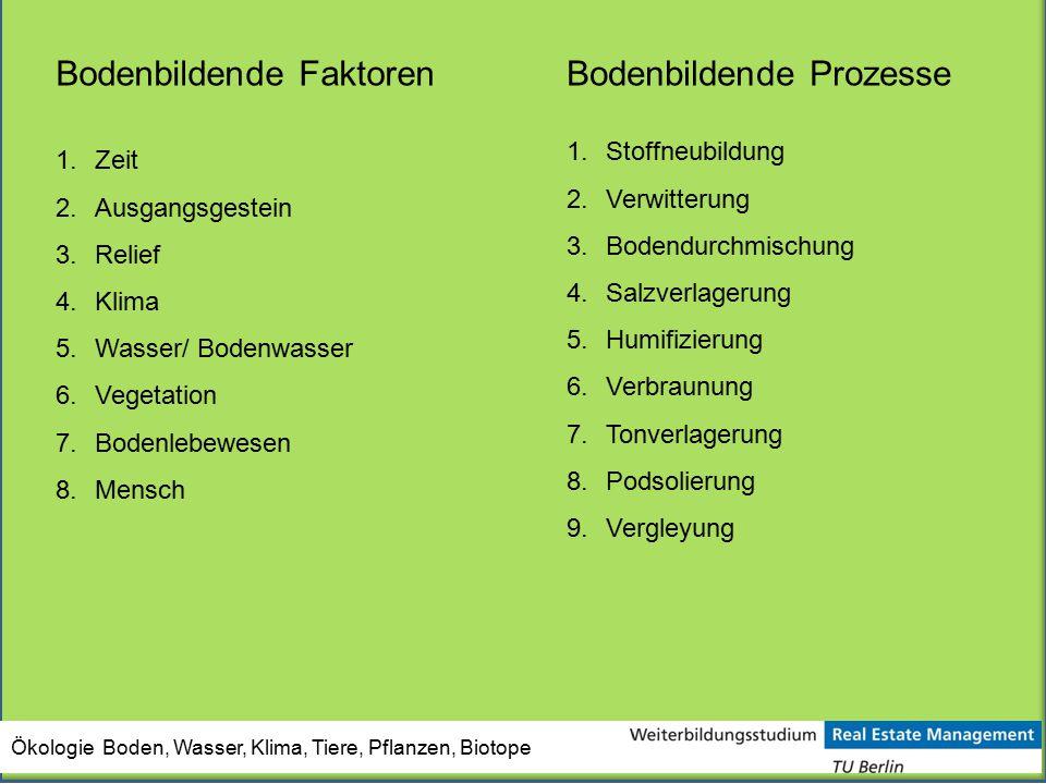 Bodenbildende Faktoren Bodenbildende Prozesse
