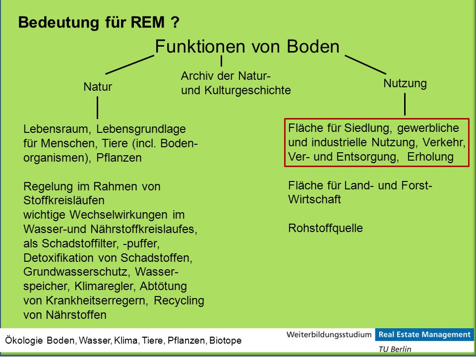 Funktionen von Boden Bedeutung für REM Archiv der Natur-