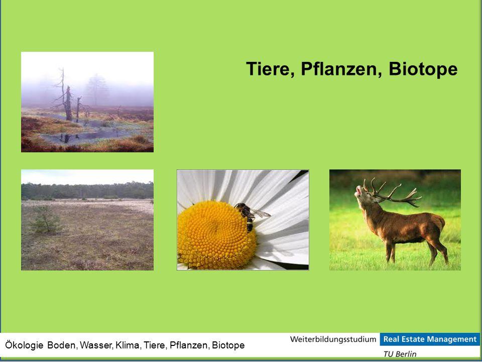 Tiere, Pflanzen, Biotope