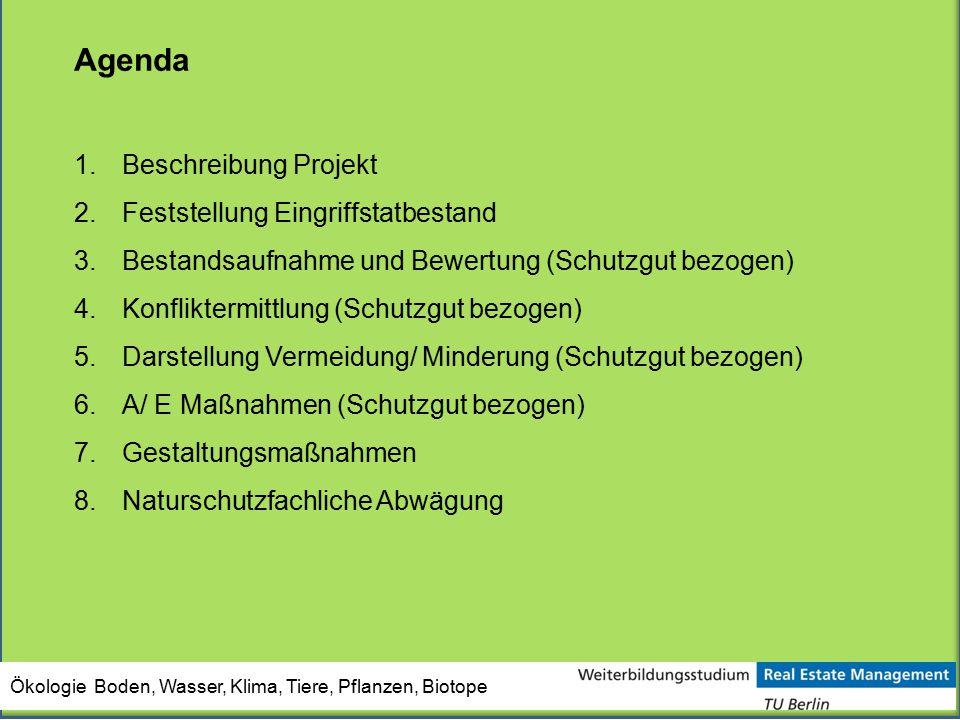 Agenda Beschreibung Projekt Feststellung Eingriffstatbestand