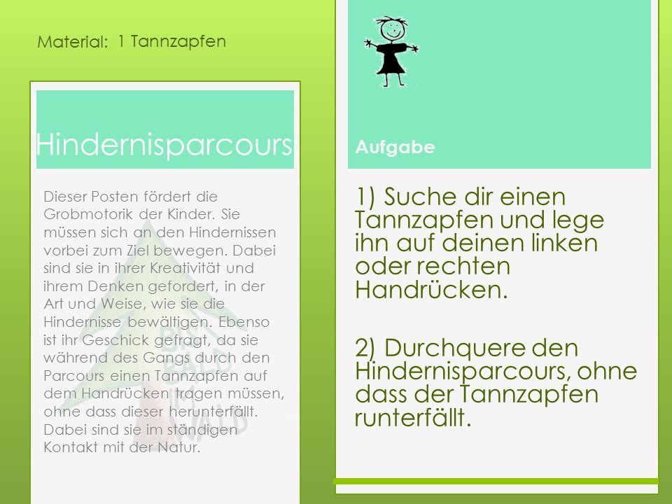 1 Tannzapfen Hindernisparcours.