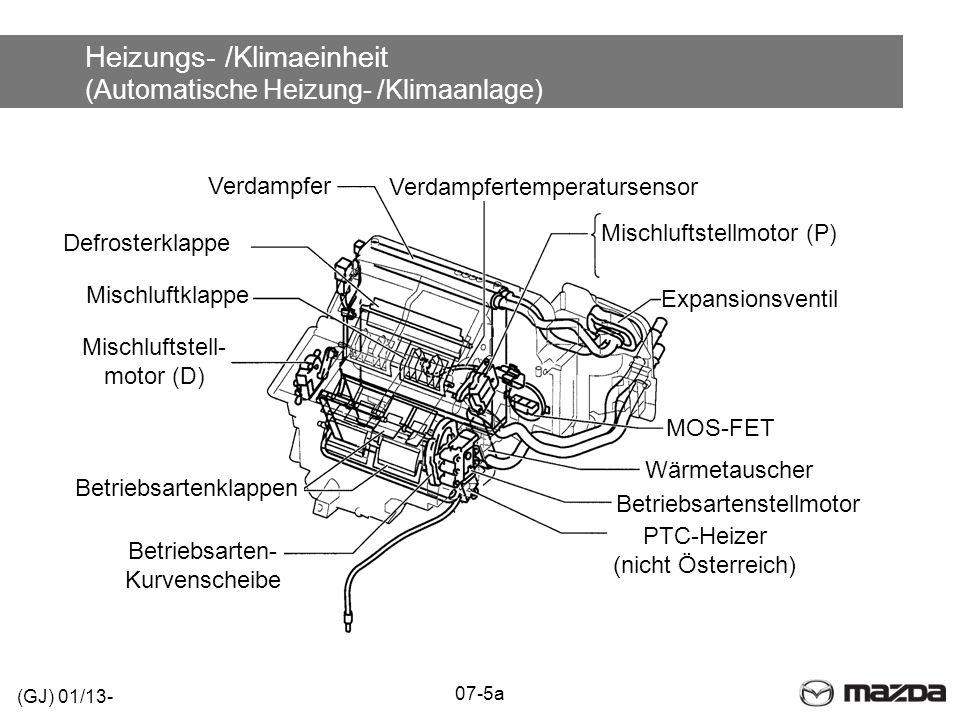 Heizungs- /Klimaeinheit (Automatische Heizung- /Klimaanlage)