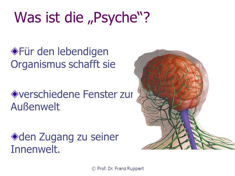 """Was ist die """"Psyche Für den lebendigen Organismus schafft sie"""