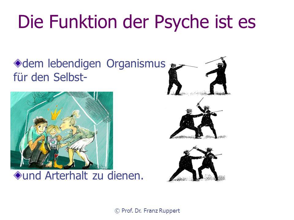 Die Funktion der Psyche ist es