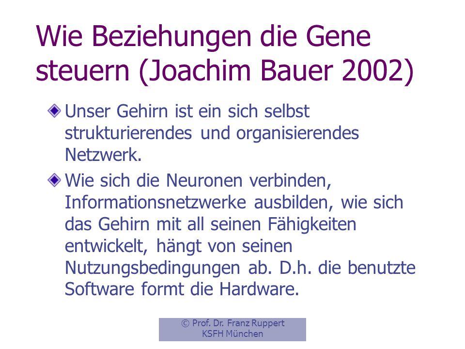 Wie Beziehungen die Gene steuern (Joachim Bauer 2002)