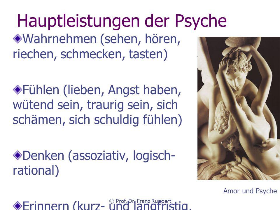 Hauptleistungen der Psyche