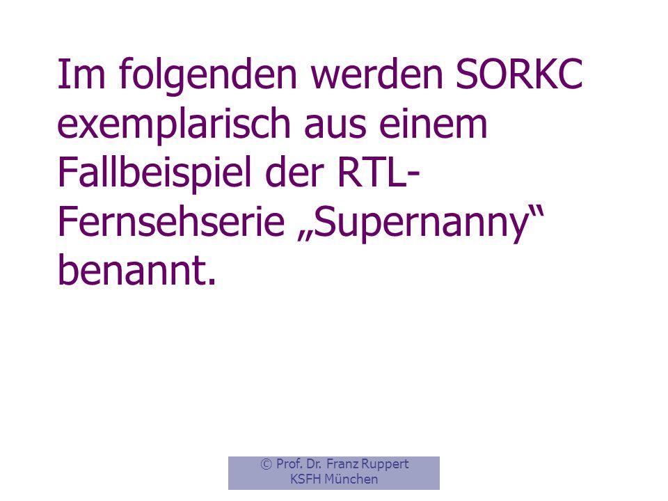 """Im folgenden werden SORKC exemplarisch aus einem Fallbeispiel der RTL-Fernsehserie """"Supernanny benannt."""