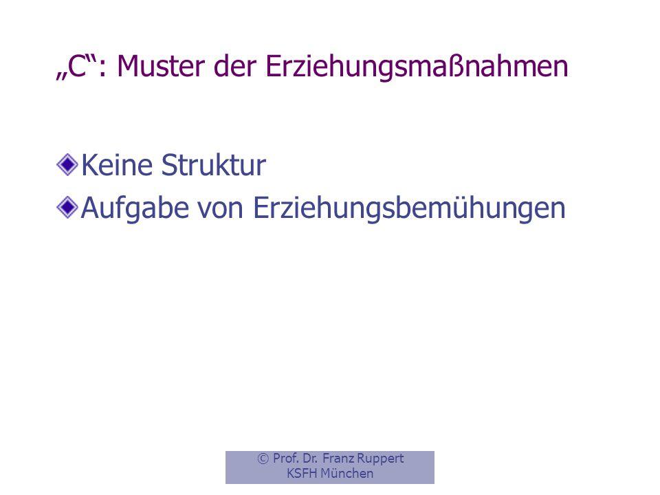 """""""C : Muster der Erziehungsmaßnahmen"""