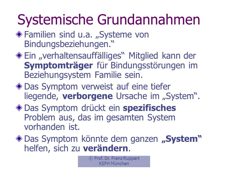 Systemische Grundannahmen