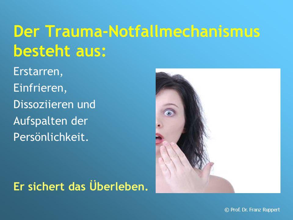 Der Trauma-Notfallmechanismus besteht aus: