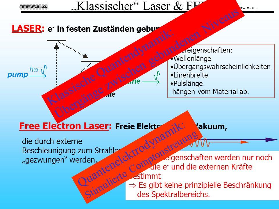 """""""Klassischer Laser & FEL"""