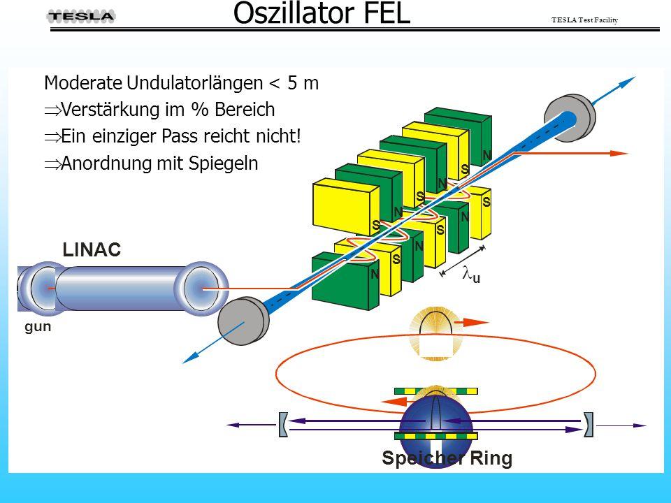 Oszillator FEL LINAC  Speicher Ring Moderate Undulatorlängen < 5 m