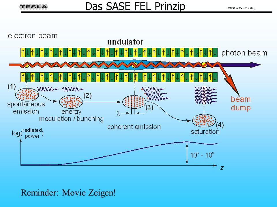 Das SASE FEL Prinzip Reminder: Movie Zeigen!
