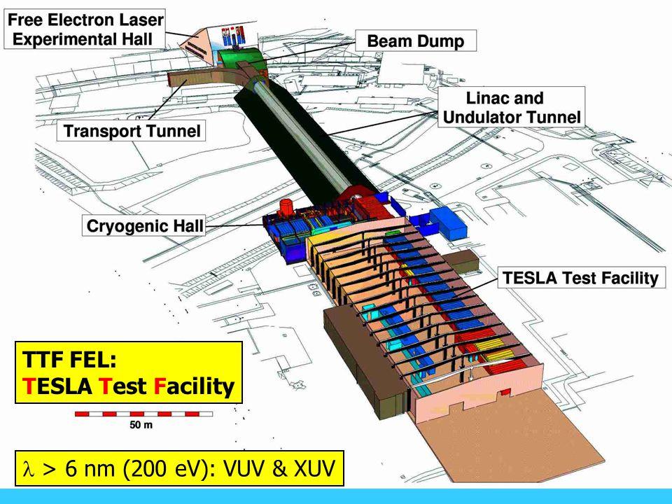 TTF II TTF FEL: TESLA Test Facility l > 6 nm (200 eV): VUV & XUV