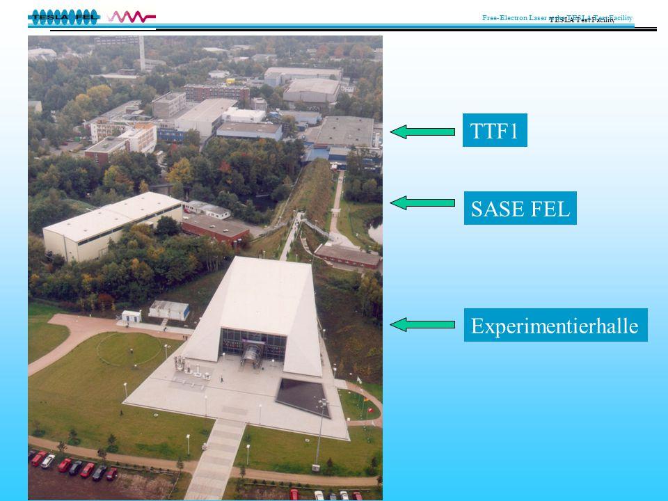 TTF1 SASE FEL Experimentierhalle