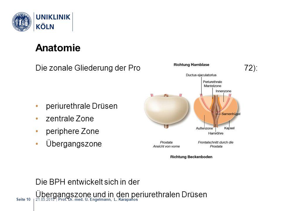 Anatomie Die zonale Gliederung der Prostata enthält nach McNeal (1972): periurethrale Drüsen. zentrale Zone.