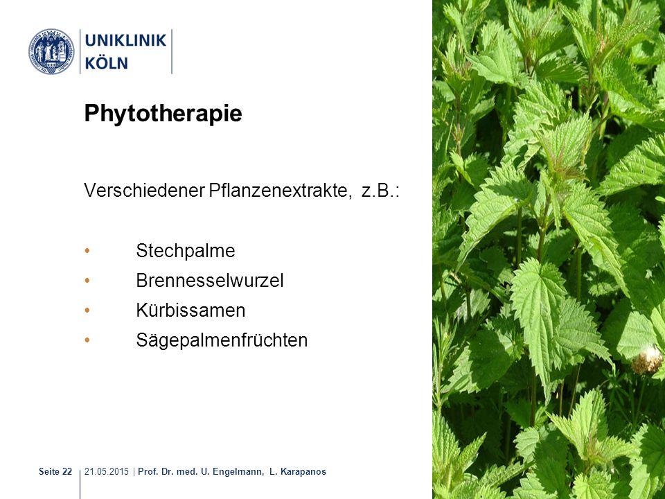 Phytotherapie Verschiedener Pflanzenextrakte, z.B.: Stechpalme