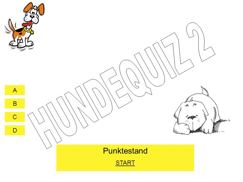 HUNDEQUIZ 2 START
