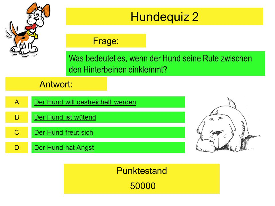 Hundequiz 2 Frage: Was bedeutet es, wenn der Hund seine Rute zwischen den Hinterbeinen einklemmt Antwort:
