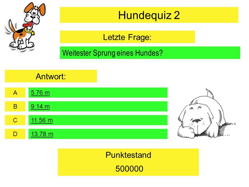 Hundequiz 2 Letzte Frage: Weitester Sprung eines Hundes Antwort: