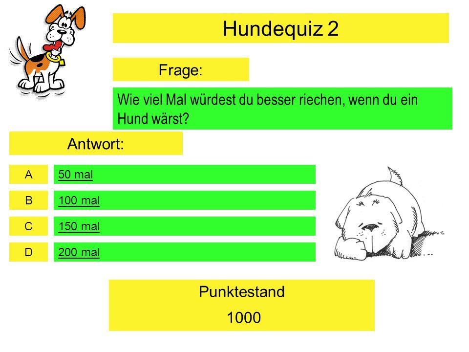 Hundequiz 2 Frage: Wie viel Mal würdest du besser riechen, wenn du ein Hund wärst Antwort: 50 mal.