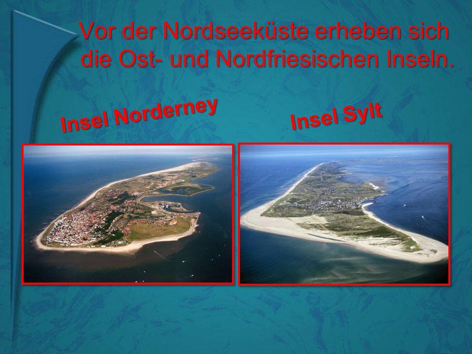 Vor der Nordseeküste erheben sich die Ost- und Nordfriesischen Inseln.