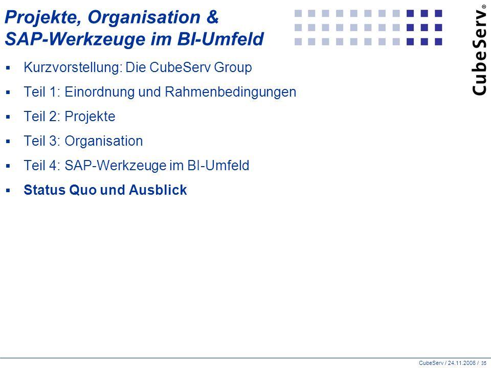 Projekte, Organisation & SAP-Werkzeuge im BI-Umfeld
