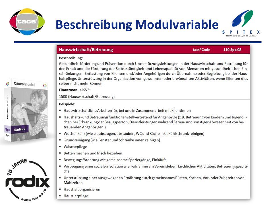 Beschreibung Modulvariable