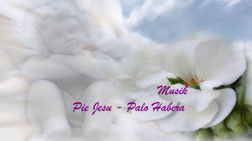 Musik Pie Jesu - Palo Habera