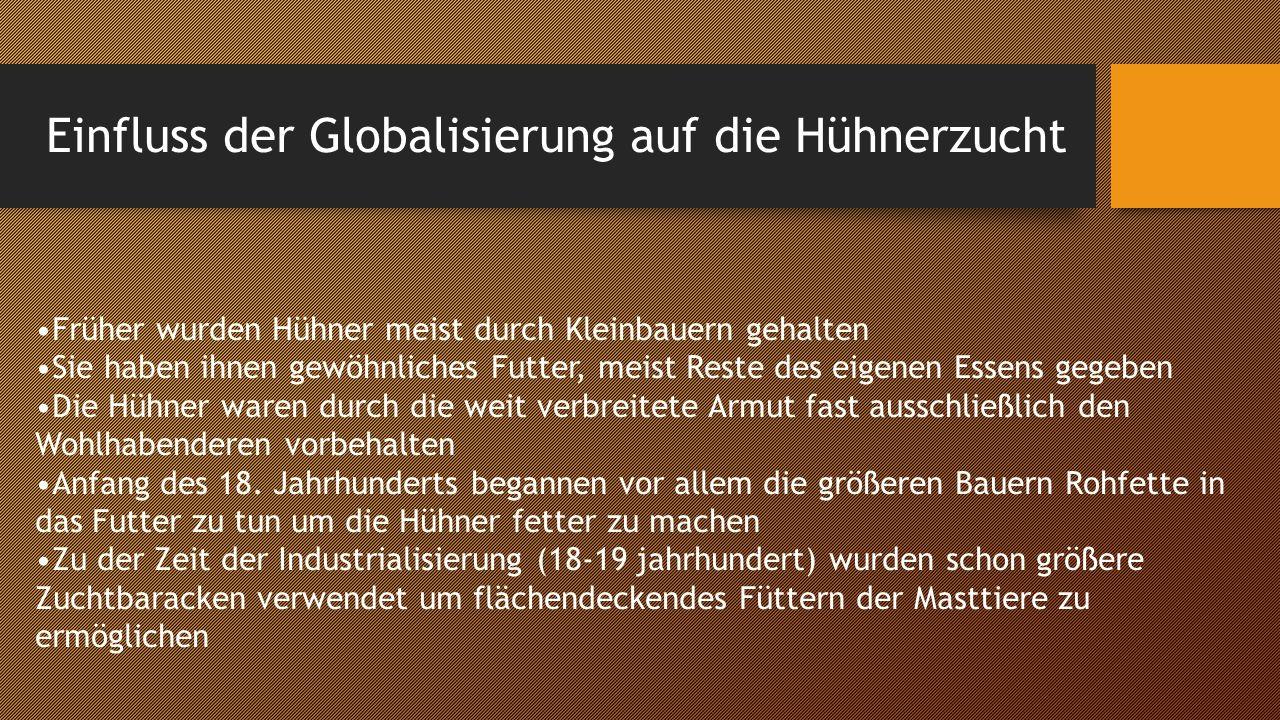 Einfluss der Globalisierung auf die Hühnerzucht