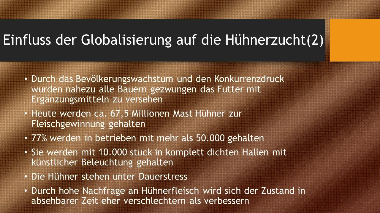 Einfluss der Globalisierung auf die Hühnerzucht(2)