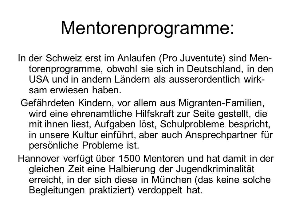Mentorenprogramme: