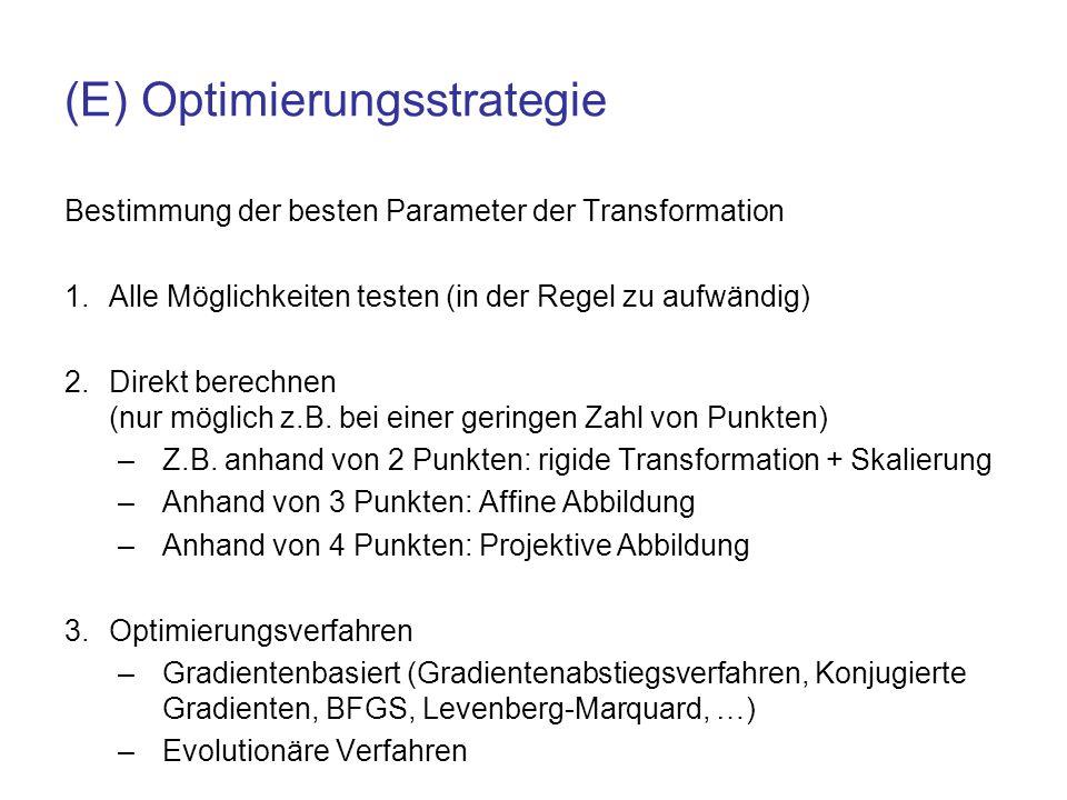 (E) Optimierungsstrategie
