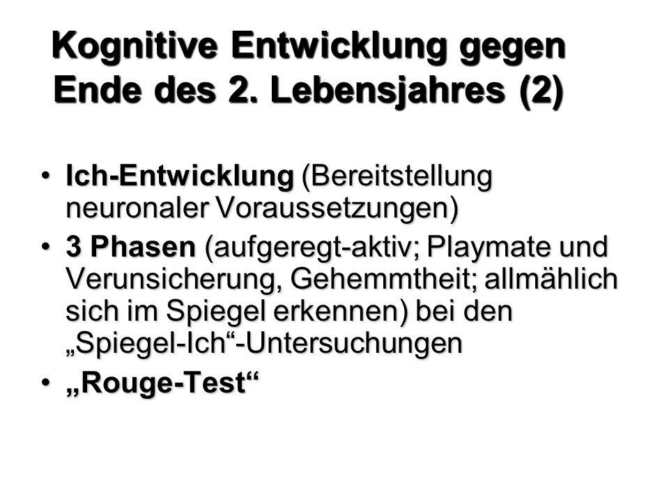 Kognitive Entwicklung gegen Ende des 2. Lebensjahres (2)