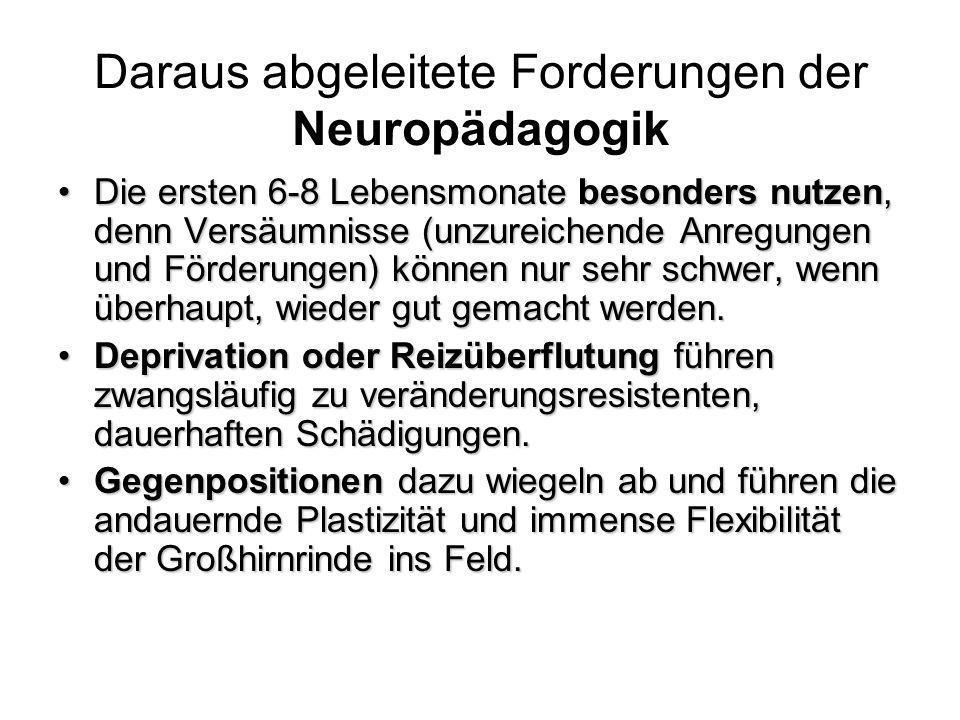 Daraus abgeleitete Forderungen der Neuropädagogik