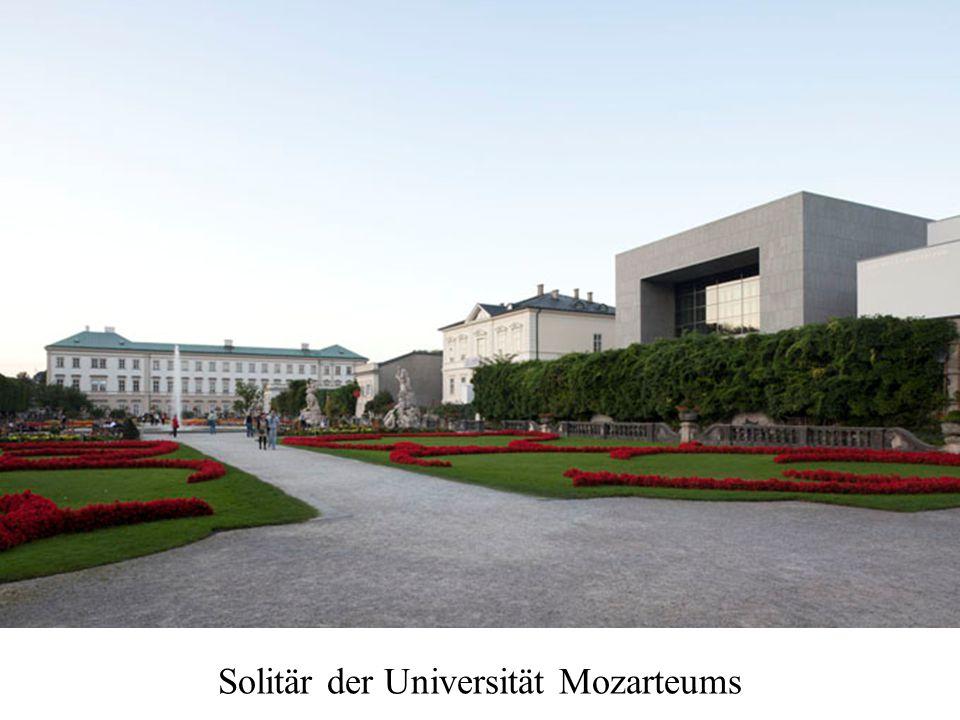 Solitär der Universität Mozarteums