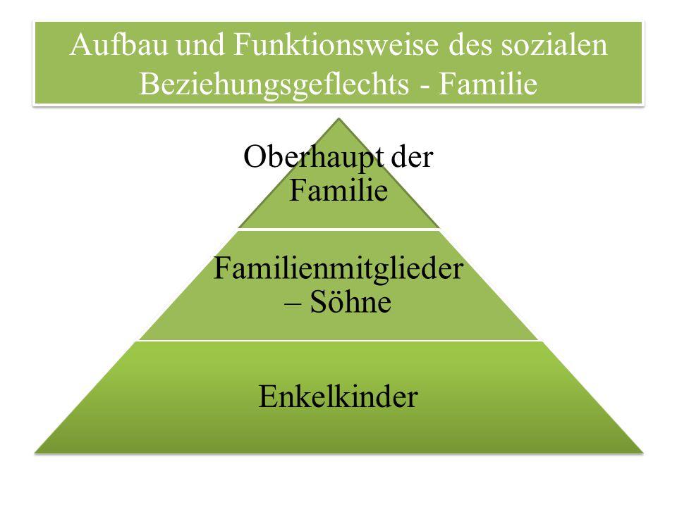 Aufbau und Funktionsweise des sozialen Beziehungsgeflechts - Familie