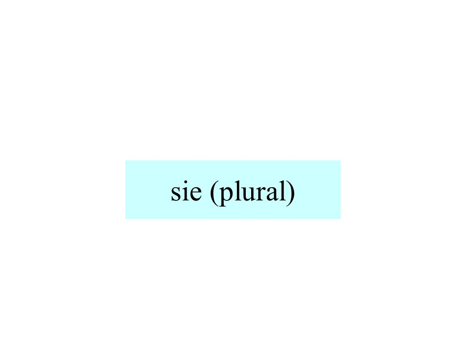 sie (plural)