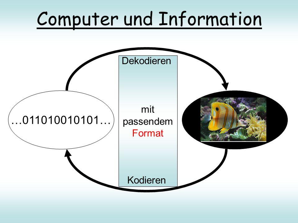 Computer und Information