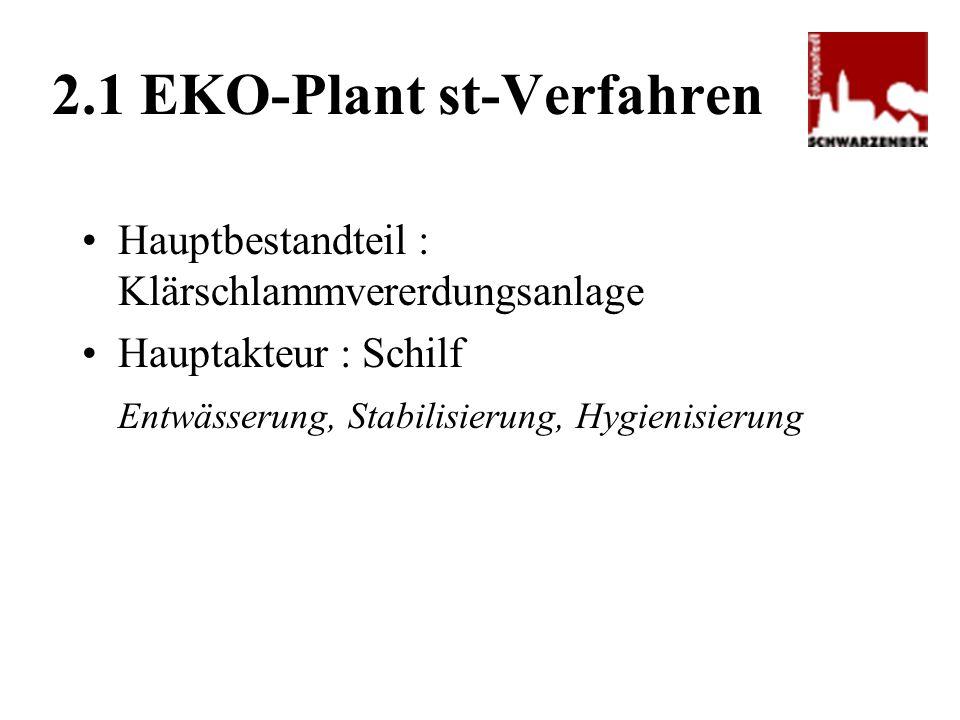 2.1 EKO-Plant st-Verfahren