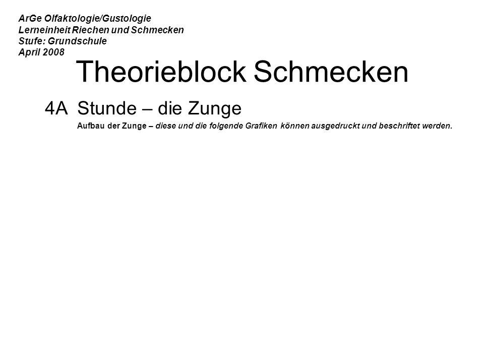 Theorieblock Schmecken