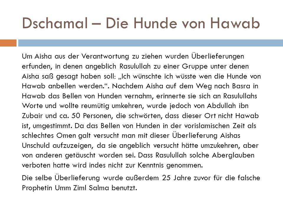 Dschamal – Die Hunde von Hawab