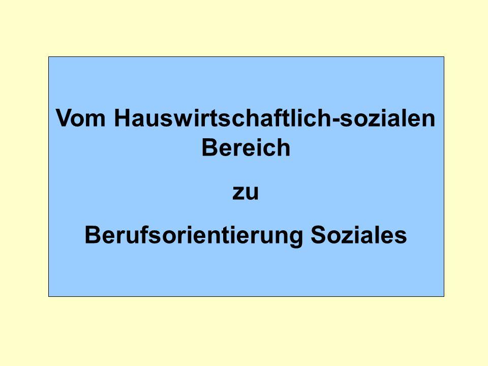 Vom Hauswirtschaftlich-sozialen Bereich Berufsorientierung Soziales