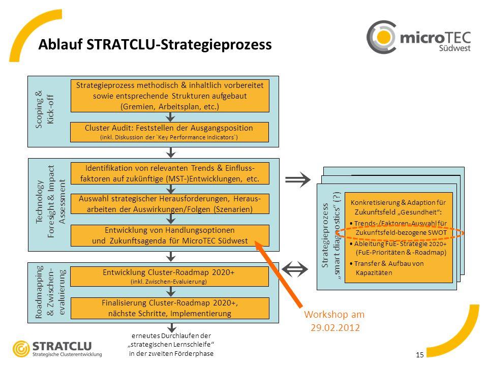 Ablauf STRATCLU-Strategieprozess